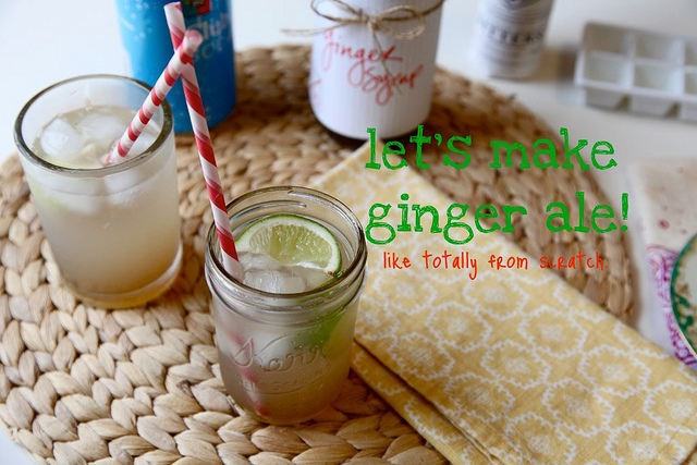 Ginger-Ale-Syrup-from-Joy-The-Baker-on-the-Sew-Creative-Blog