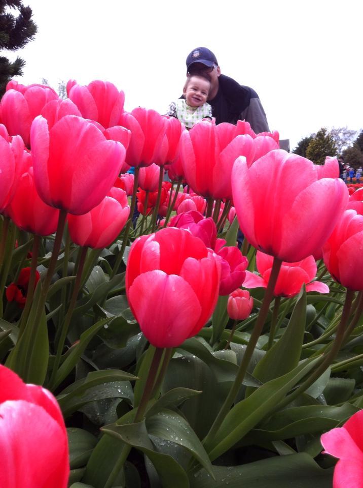 Tulip Festival Sew Creative 6