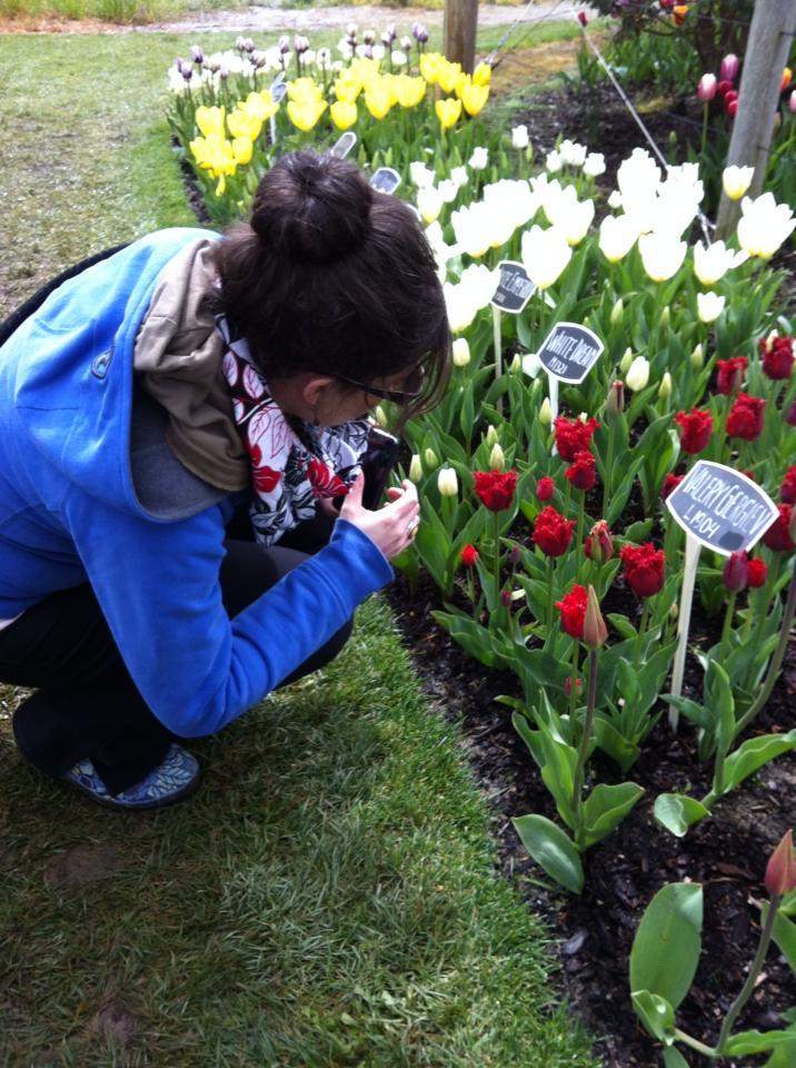 Tulip Festival Sew Creative 8
