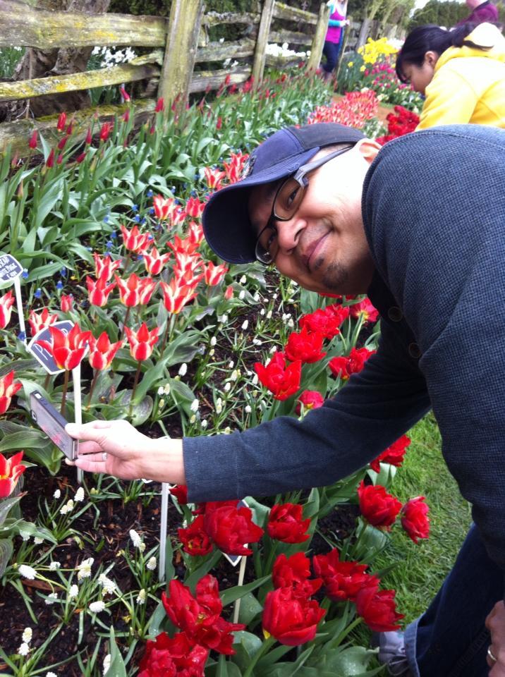 Tulip Festival Sew Creative 9