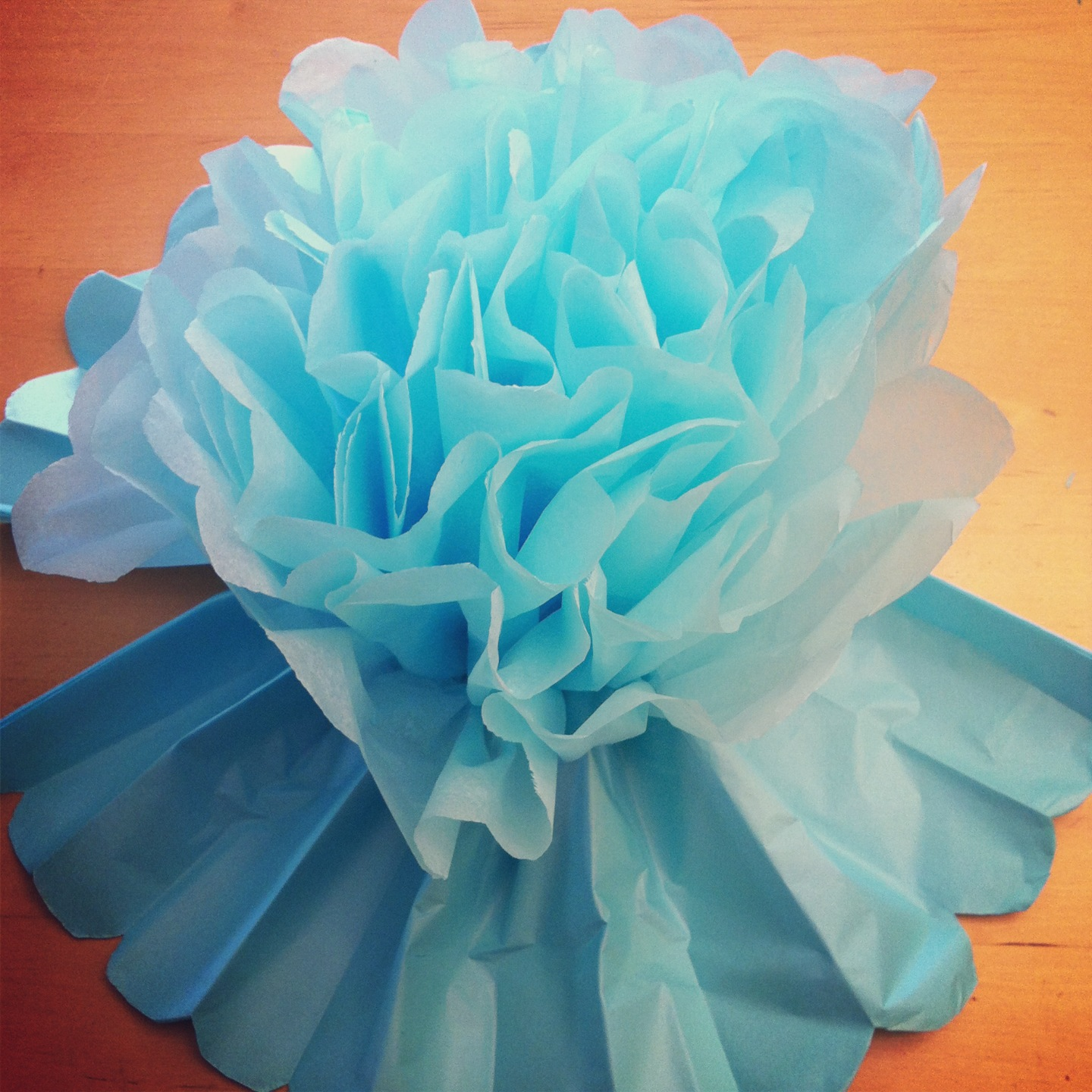 DIY Giant Tissue Paper Flowers Tutorial 2 for $1.00 Make Beautiful Birthday Party Decorations Step 8