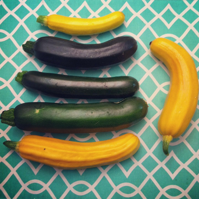 Pan Seared Balsamic Baby Summer Squash Zucchini Past with Garlic Scape Pesto squash