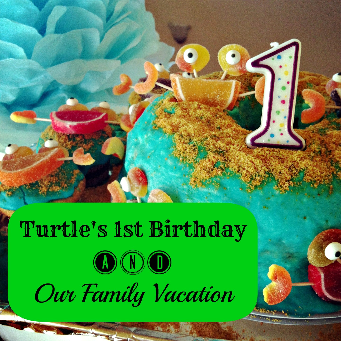 Turtle's 1st Birthday and Our Family Vacation