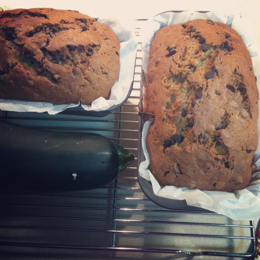 Chocolate Chip Zucchini Bread Recipe 2