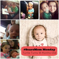 #SearsMom Monday- Turtle Turns 18 Months Old