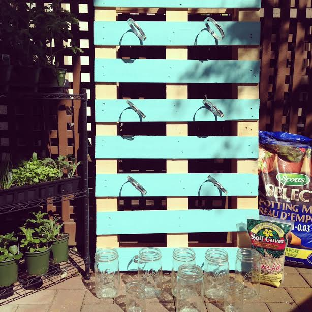 DIY Pallet Mason Jar Herb Garden Tutorial. This post has step by step instructions and tons of photos. A great family weekend project. 8