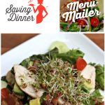 Balsamic Chicken Salad Recipe from Saving Dinner and Sew Creative