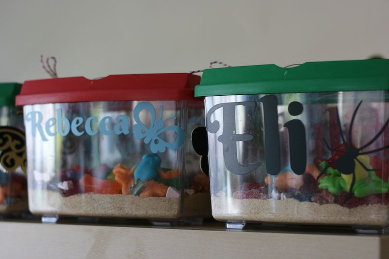 Personalized Bug Catchers perfect for a Bug Themed Birthday
