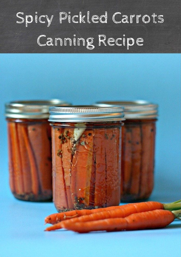 Spicy Pickled Carrots Canning Recipe. Canning with Crystal from Sew Creative