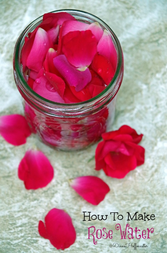 How to make homemade rose water for natural skincare for Diy rose food