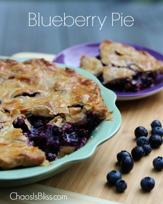 The best things in life are all about simplicity... especially blueberry pie. Check out this quick and easy blueberry pie recipe that is perfect for summer.