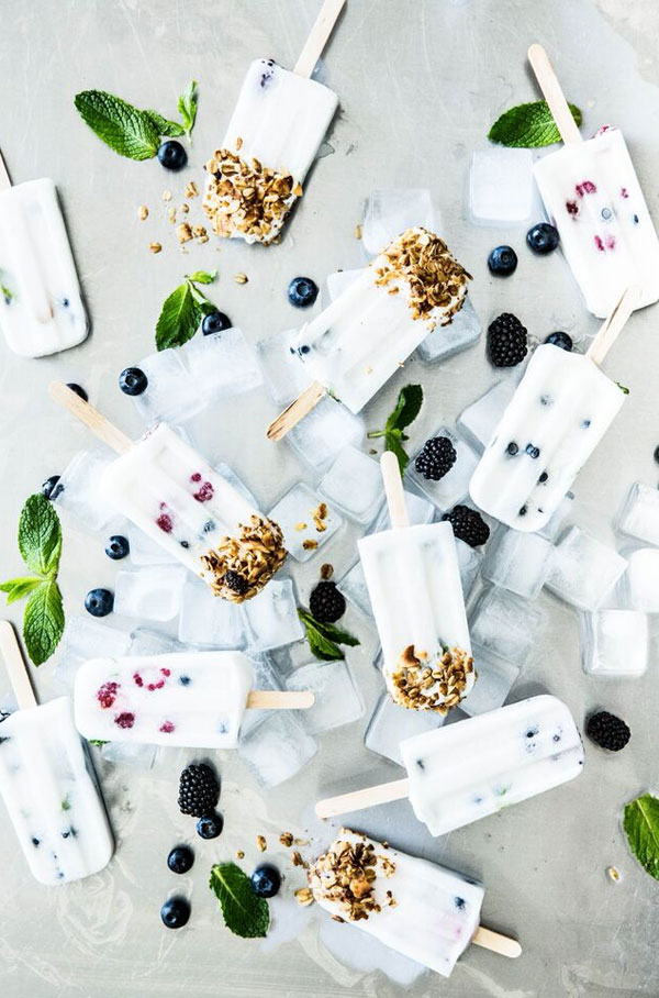 Berry Coconut Milk Popsicles Recipe from Apartment 34