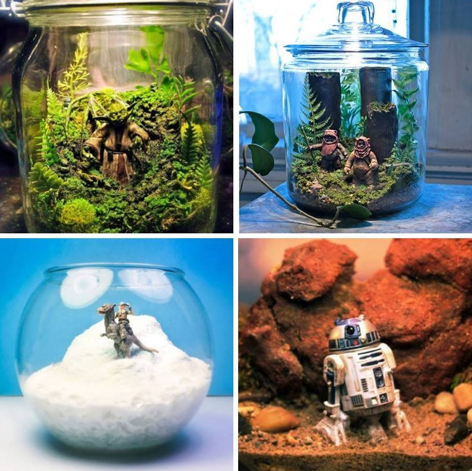 Star Wars Terrariums from GeekTak
