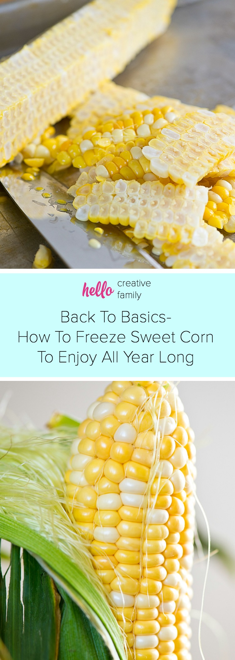 There is nothing in the world like the flavor of fresh sweet corn! It doesn't have to be just a summertime treat! Learn how to freeze sweet corn, fresh from the farmer's stand, in Hello Creative Family's latest Back To Basics tutorial!