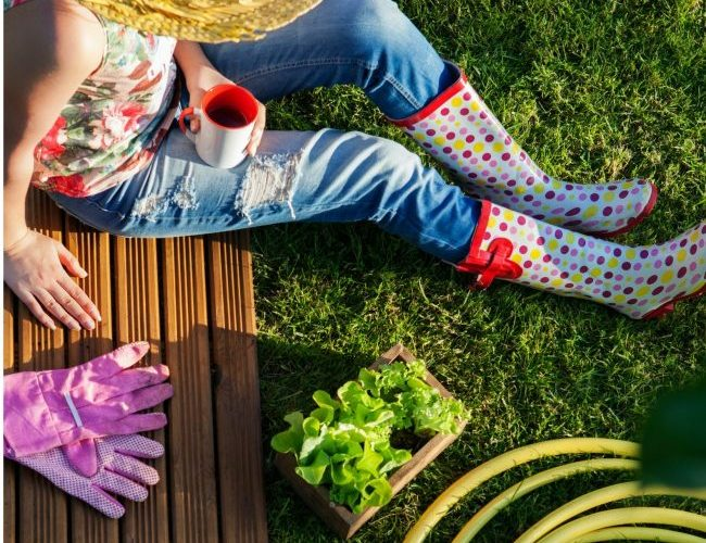 Creative Voices: How Gardening Grows My Creativity