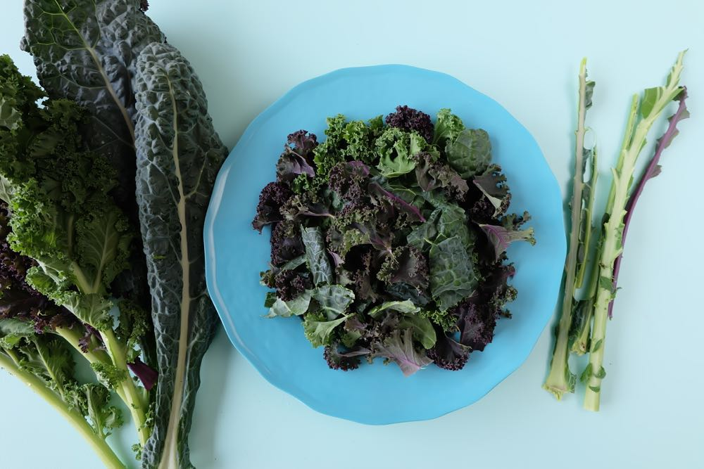 Want to know the secret to the most tender kale salad you've ever eaten? Whether you are buying a bagged kale salad from Costco, purple kale, green kale, flat leaf kale or curly leaved kale you need to know this secret! I'll never make my kale salad recipe the same way again! And it's so easy!