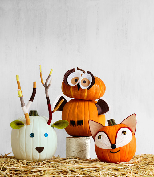 27+ Awesome Pumpkin Crafts, DIYs and Decorating Ideas-Woodland Animal Pumpkins from Country Living