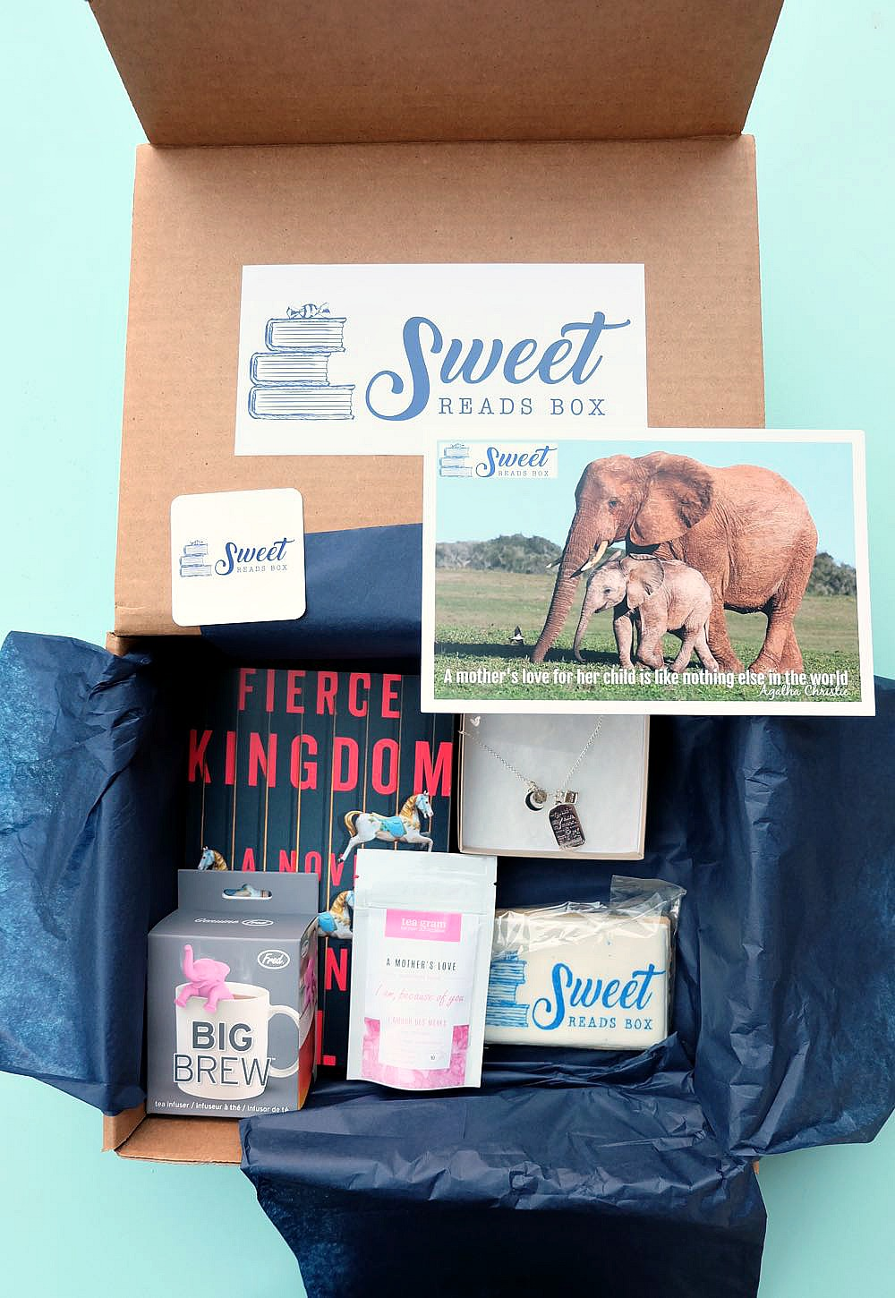 Looking for the perfect gift idea for book lovers in your life? We're sharing the Sweet Reads Box & why it's a great gift for yourself or your book club! Perfect for Christmas, Mother's Day, Birthdays or for a mama to be at her baby shower!