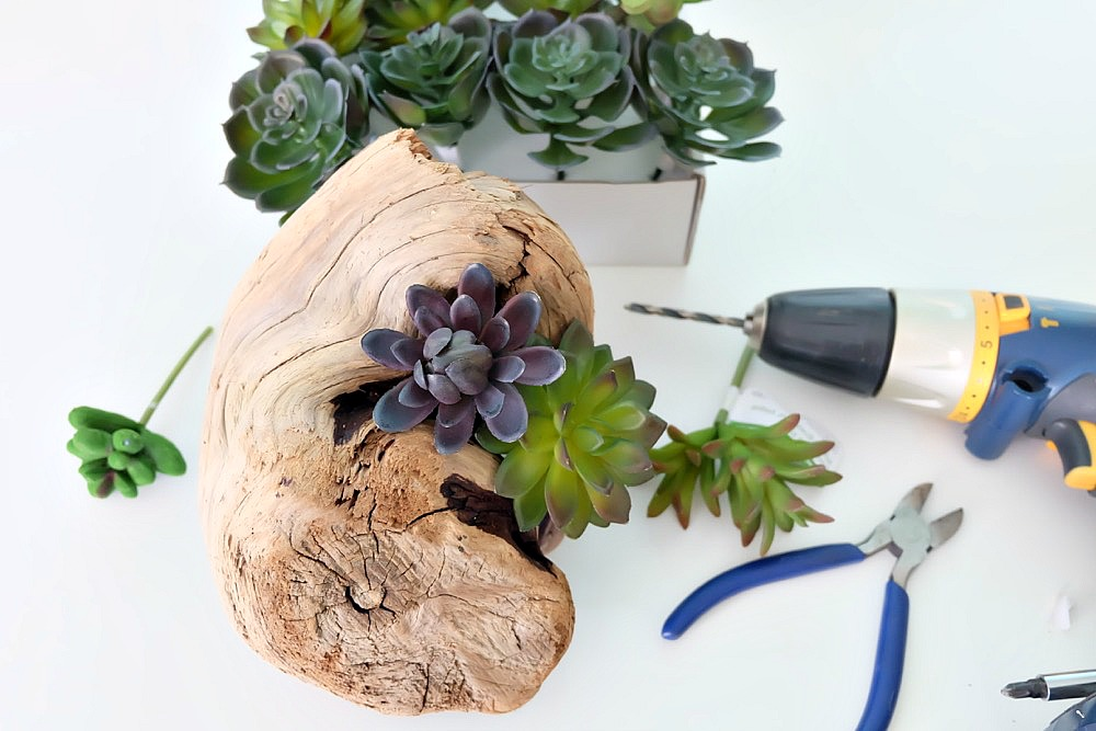 Create a beautiful DIY Faux Succulent Driftwood Planter with this easy step by step tutorial. Perfect for decorating a beach cottage, for centerpieces for an ocean themed wedding or party, or for a bit of pretty greenery in your home using driftwood you collected while beach combing. #DIY #Beach #Succulents