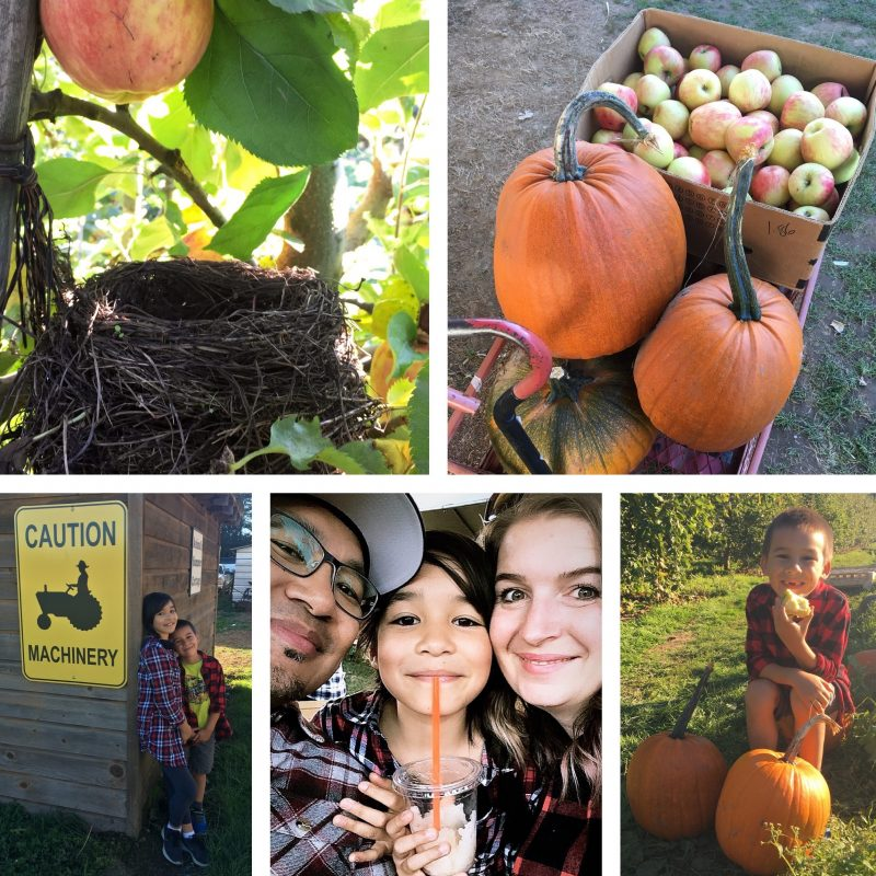 Vancvouer Blogger Hello Creative Family at Willowview Apple Farm in Abbotsford BC