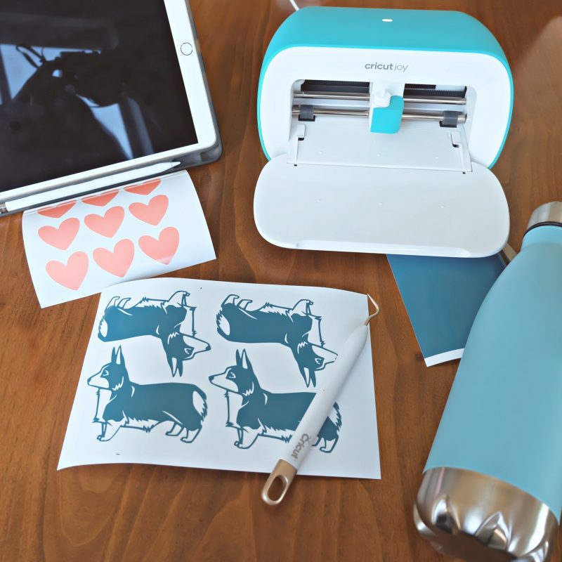 Cricut Joy set up to make a puppy love water bottle.